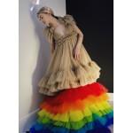 Tulle dress with rainbow underskirt